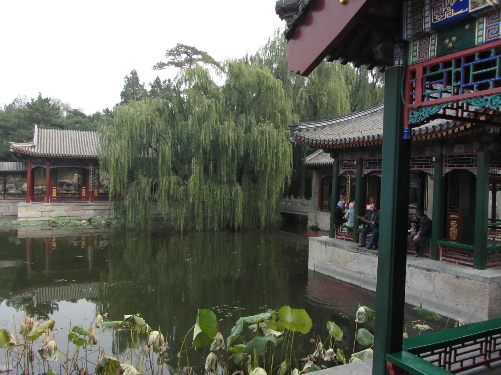 jardin de l'harmonie vertueuse